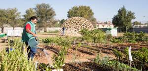 urban gardens equipment